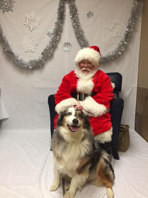 Brian's 1st Christmas  2016.jpg