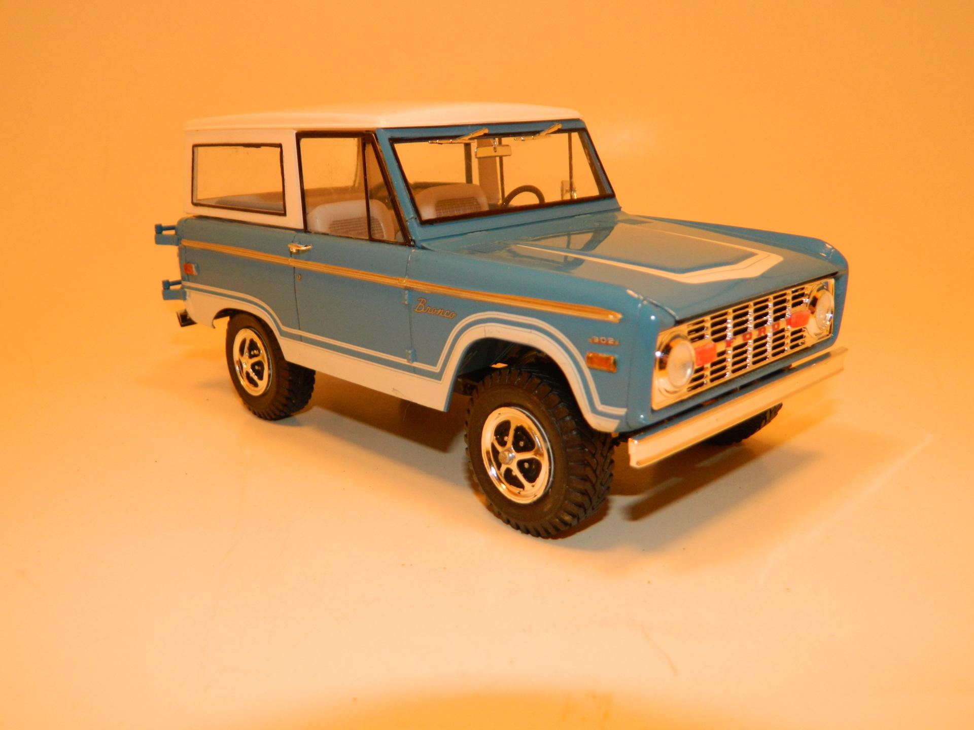 Bronco48.JPG