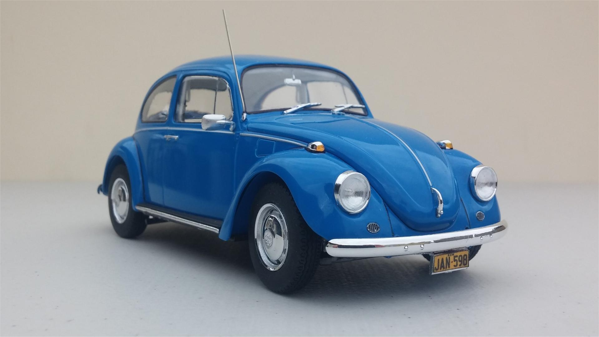 68_Beetle18.thumb.jpg.a98297395ad077487ad4636002ed2f26.jpg