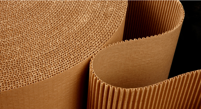 The-Future-of-Corrugated-Board-Packaging-to-2019.jpg