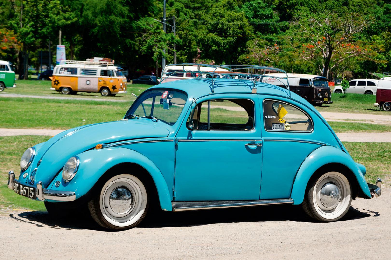 10252_Real-Beetle.jpg