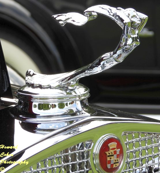 Concours of America  2019 1137.JPG