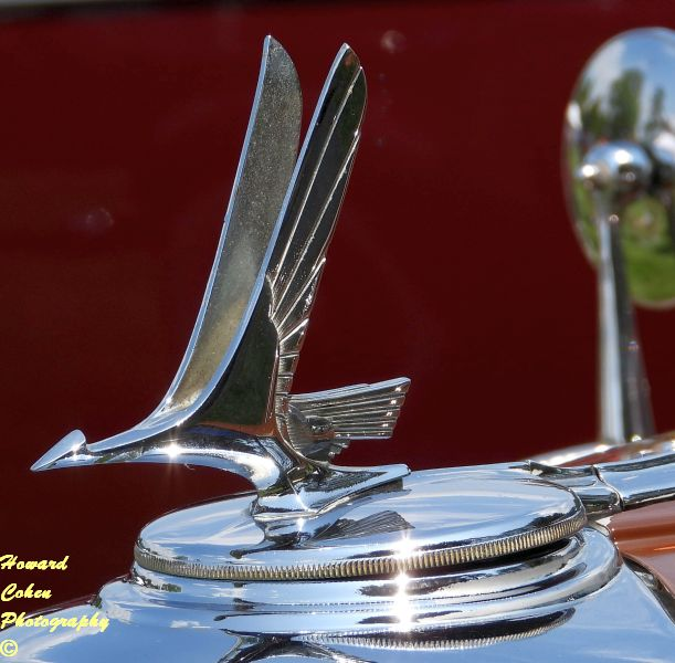 Concours of America  2019 1244.JPG