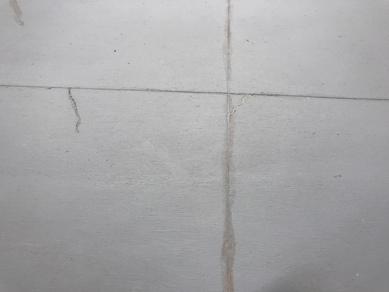 1682BFFB-7959-48CD-A945-6325D4B18442.thumb.jpeg.f1d8318b5fffad2df916dc524ed48f4b.jpeg